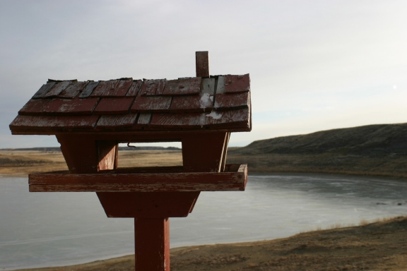Birdhouse at Fort Peck