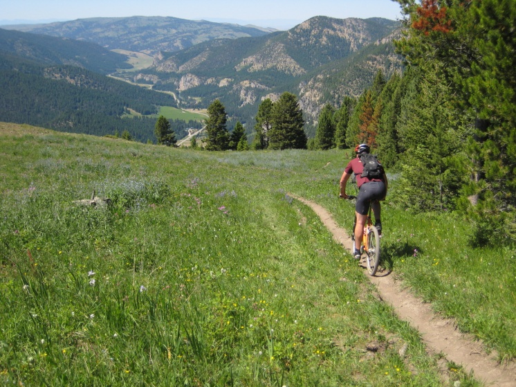 Bozeman MTB - And now the decent.