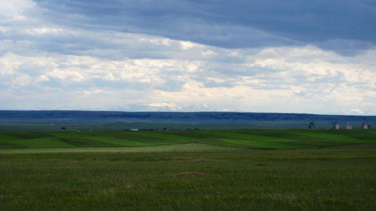 Rapelje Montana