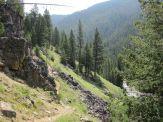 Single Track Alonside Blue Joint Creek