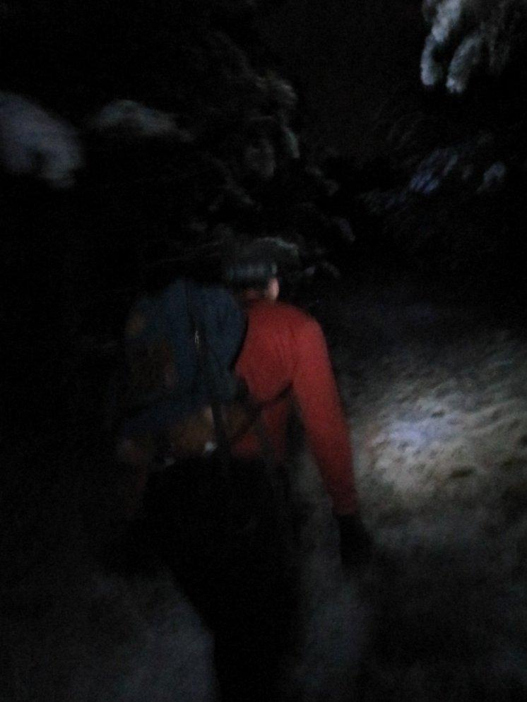 Ed hikes