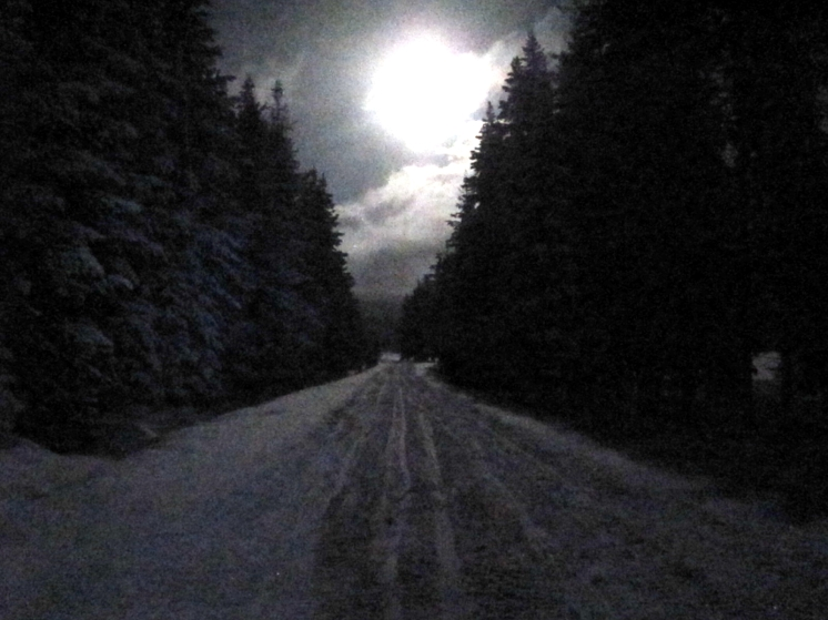 Moon over snowmobile trail