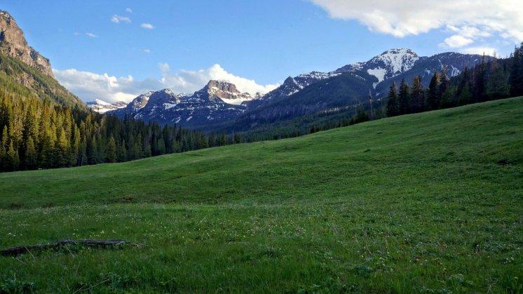 Hyalite Meadow