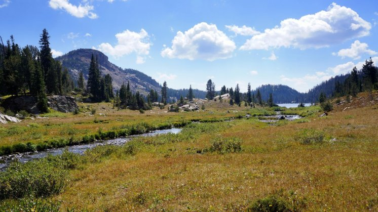 Beauty Lake Meadow
