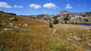 Beartooth Creek Trail