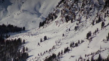 Snow fields