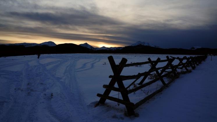 Evening fenceline