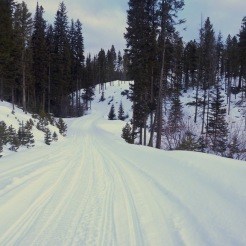 Trail conditions are excellent