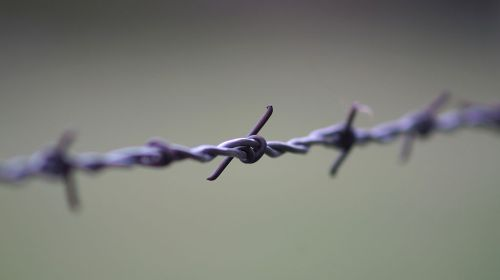 Barb-wire Fence