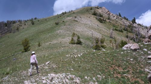 Sub Ridge