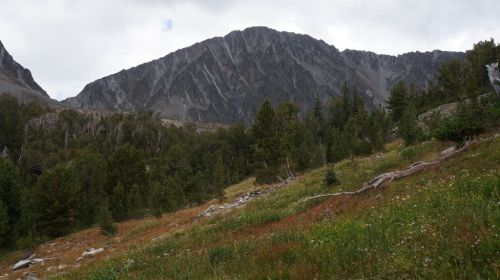 Unknown peak between Iddings Peak and Crazy Lake