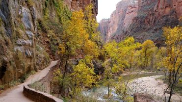 A pathway along the canyon walls