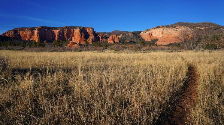 Zion Grassland