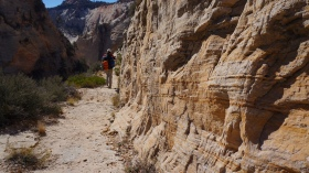 West Rim Trail