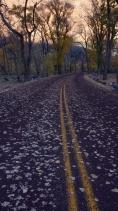 Valley Floor Road