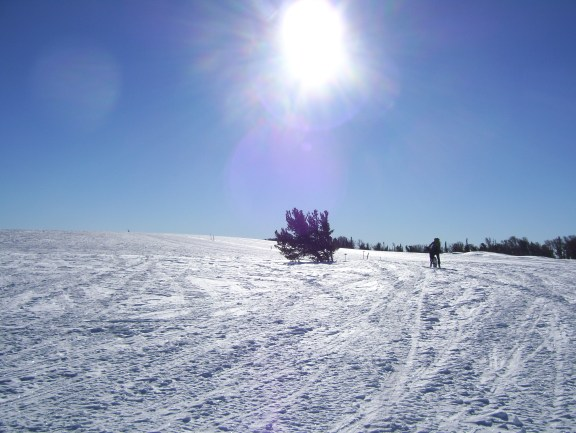 Wide Ridge