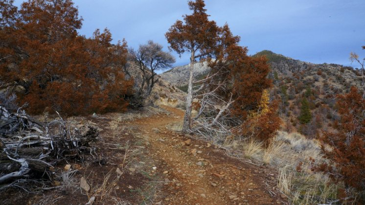 Lewis and Clark Caverns Ride