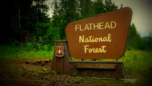 Flathead NF