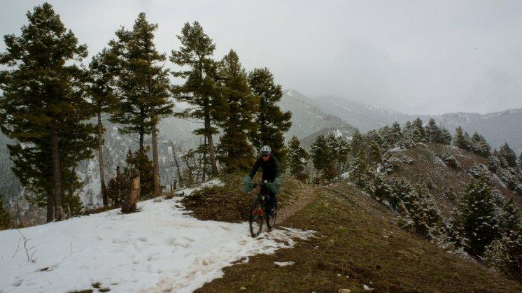 Mo on Sypes Canyon Trail