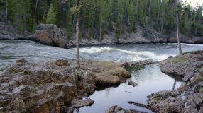 Back along the Yellowstone