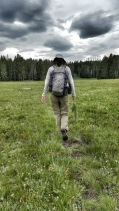 Walking a meadow in the shadow of Mount Washburn