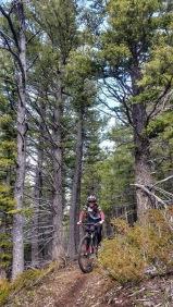 Mo enjoys the fantastic trail