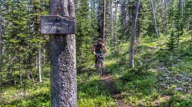 Mo rides around the north side of Virginia peak