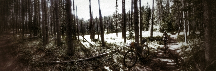 Mo rides past a wooded pond on the way to Bear Lakes
