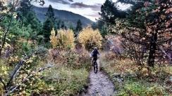 Mo climbs through the autumn colors