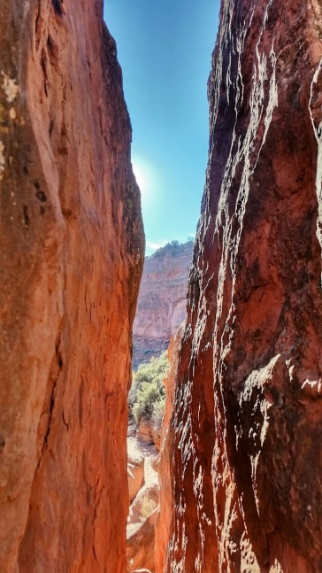 Red Cliffs area