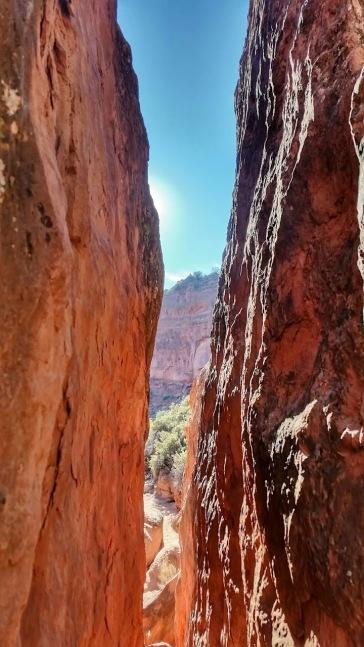 Red Cliffs area