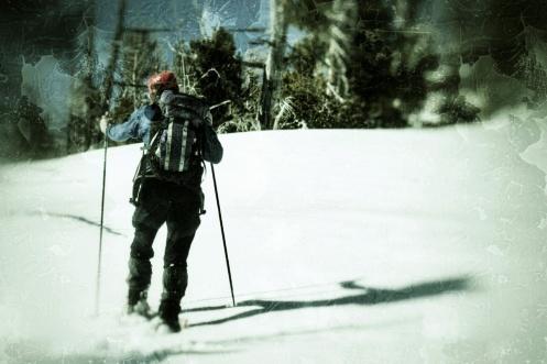 Alden breaking trail.