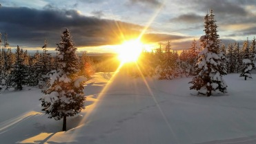Woke up to a nice sunrise