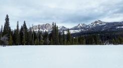 Meadow near the Brooks Lake Trail.