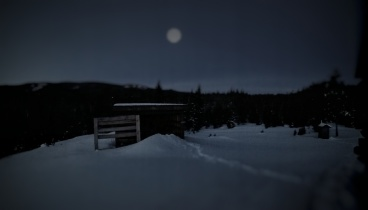 The moon lingers over the wood shed