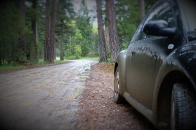 Taking beep off road