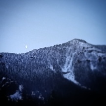 Got up one morning to a clear sky and the moon peaking over the ridge