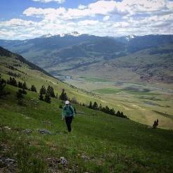 Climbing open fields of grass