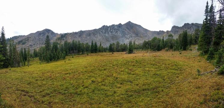 Meadow towards Mustard Pass