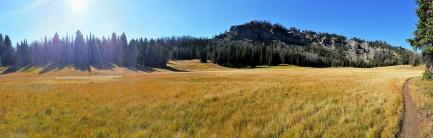 Lizard Lake Meadow