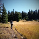 Breaking out into Lizard Meadow