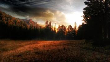 Sun rises over Lizard Lake Meadow