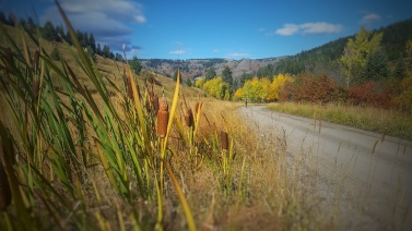 Here comes more as we do a short gravel grinder to the trailhead