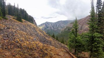 Looking back down the drainiage