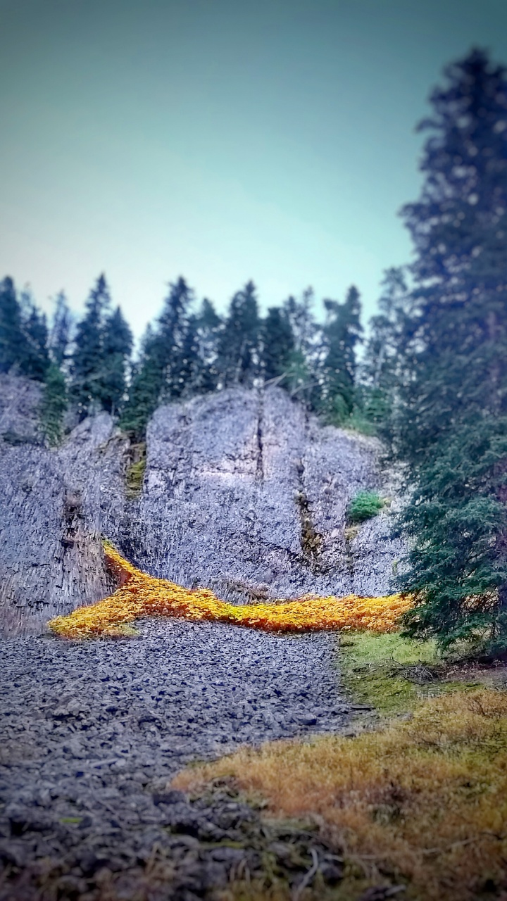 A yellow ribbon cuts the ice climbing area and the scree