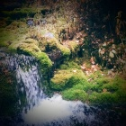 Falling green
