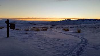 Pre dawn ... orange year
