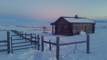 """On a return trip from the """"little house' I stopped to appreciate the colors"""