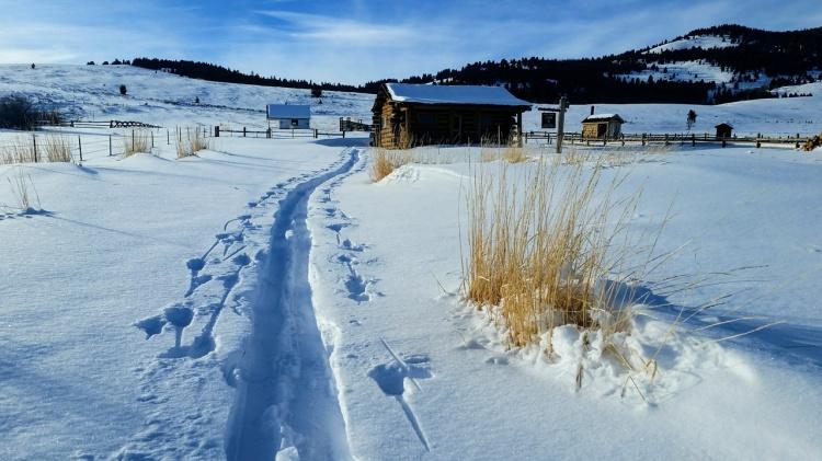 Horse Prairie cabin trip number 2