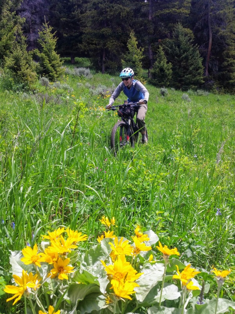 Moser Trail